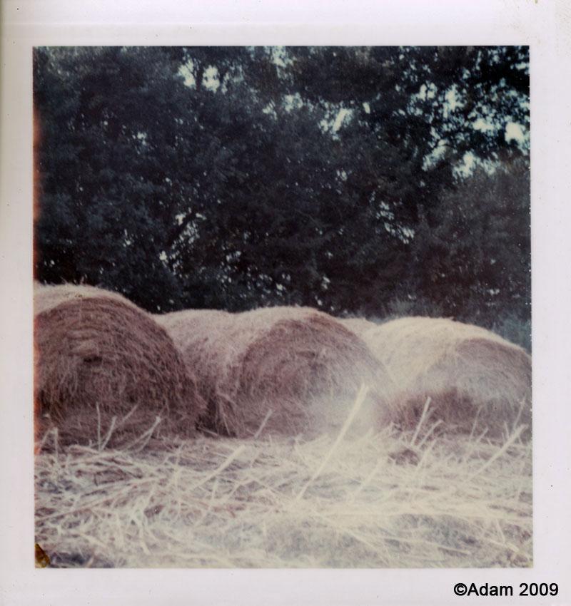 FarmHayBails